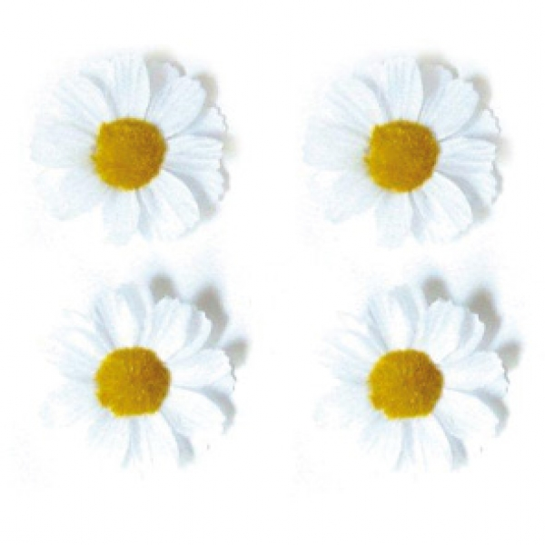 Basil 4 bloemetjes wt