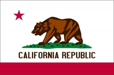 Vlag California Republic 75x110 cm