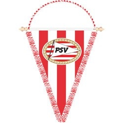 Vaan PSV Punt Club Logo 38x30 cm.