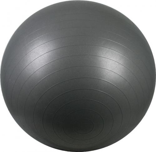Gymnastiekbal Fitness Bal 55 Grijs/Zilver