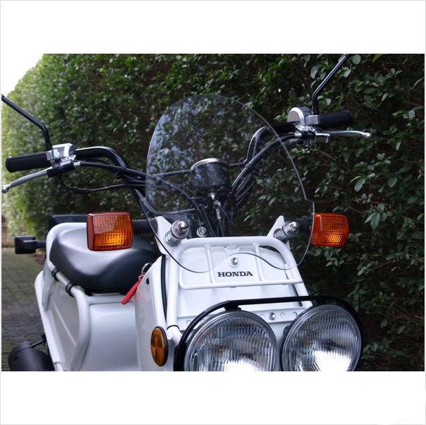 Windscherm Honda Zoomer Ruckus