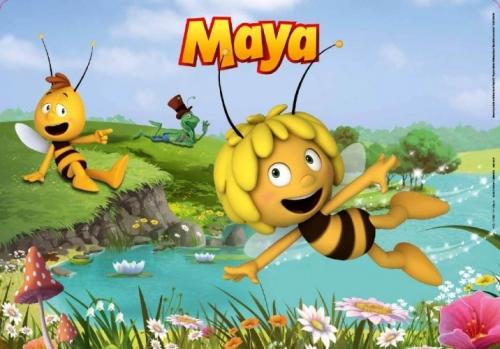 Placemat Maya 40X28