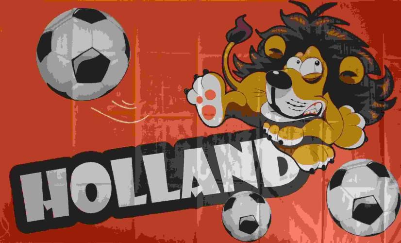 Vlag Holland Leeuw & Bal